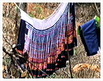 Hmong Clothe Tradition